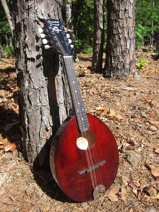 Crystal Forest AN mandolin
