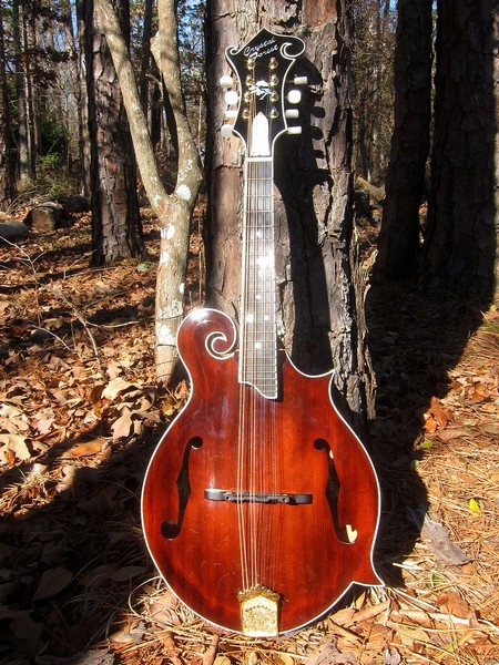 Crystal Forest F5 mandolin #CFF41214-025