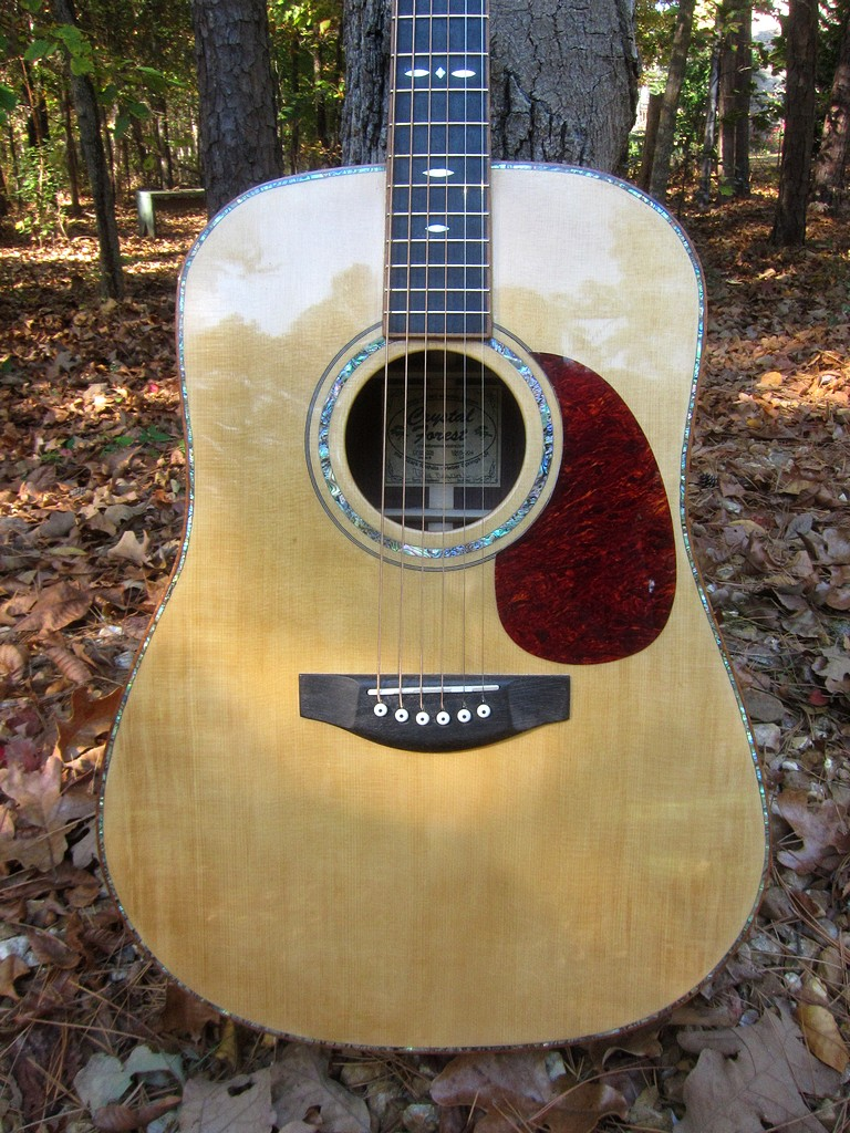 Crystal Forest Steel String Acoustic Guitar